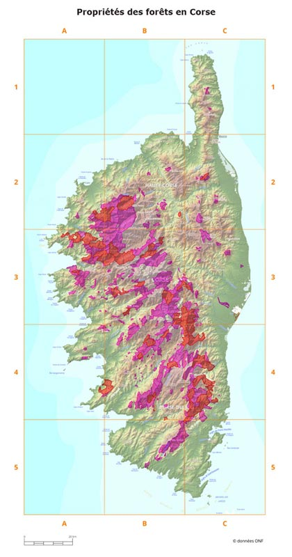 Forêts Corse hypsométrique